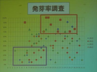 13発芽率調査4.jpg