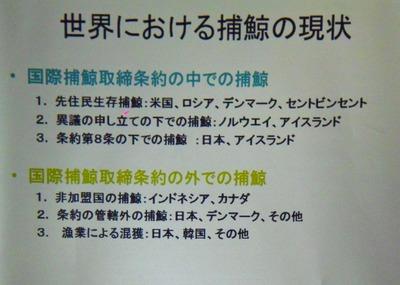 1世界における捕鯨現状.jpg