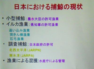 2日本における捕鯨現状.jpg