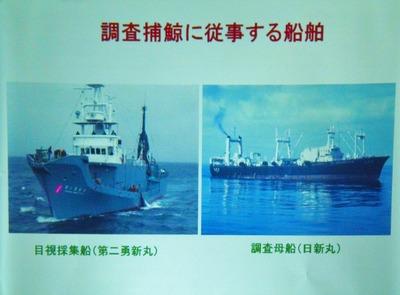 4調査捕鯨に従事する船舶.jpg