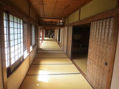 50m廊下.jpg