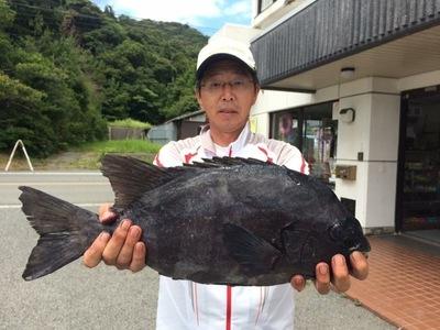 53cmの石鯛.jpg