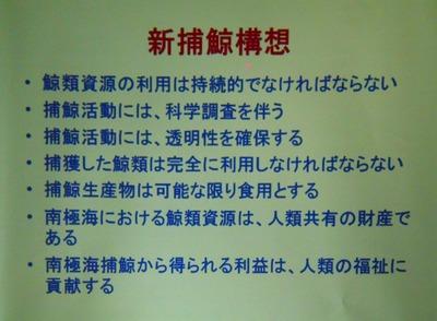 6新捕鯨構想.jpg