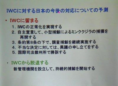 7IWCに対する日本の今後の対応についての予測.jpg
