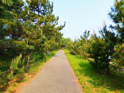 「波の橋立」遊歩道2.jpg