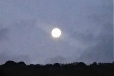 お月様.jpg