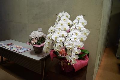 お祝いのお花.jpg