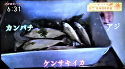 お魚さばき体験2.jpg