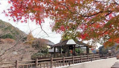 きらきら橋と紅葉.jpg