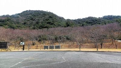 きれい・さっぱり青海島さくらの里.jpg