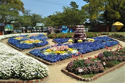 ときわ公園の季節の花3.jpg
