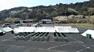 ながと青海島千本桜まつり会場3.jpg