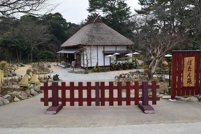 ぼたん園3.jpg