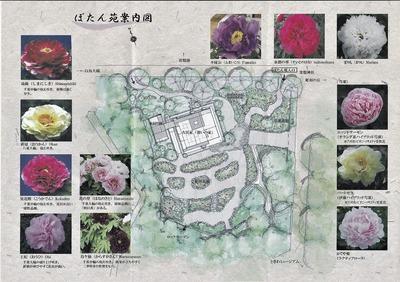 ぼたん園案内図.jpg