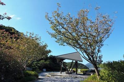 みすゞ公園の秋色2.jpg