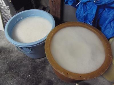 もち米かし大容器.jpg