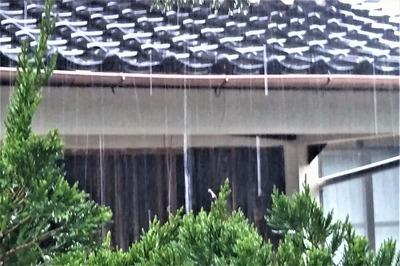 よく降る雨2.jpg