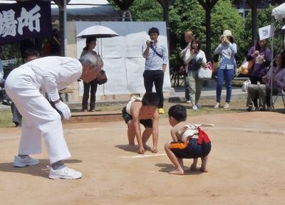 わんぱく相撲1.jpg