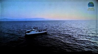 イカ釣り二日目.jpg