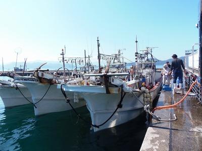 イカ釣り船3.jpg