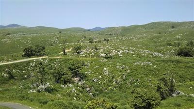 カルスト展望台からの眺望2.jpg