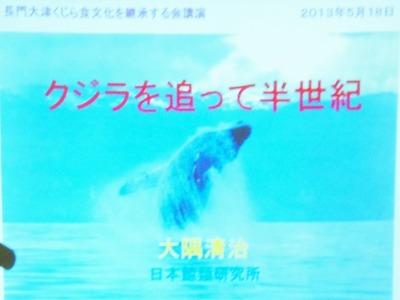 クジラを追って半世紀.jpg