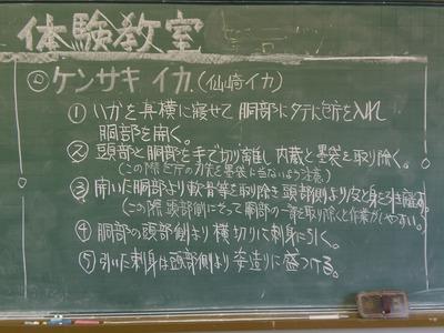 ケンサキイカさばき手順.jpg