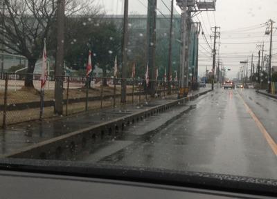 コース沿道の応援旗.jpg