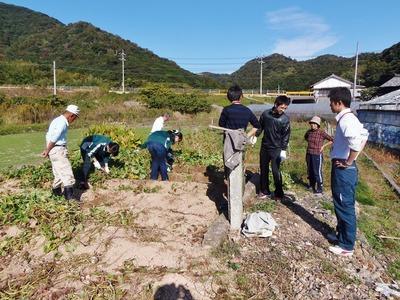 サツマイモ収穫体験.jpg