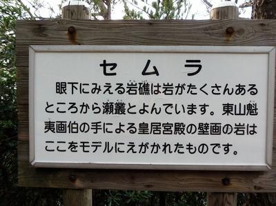 セムラ説明.jpg