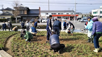 センザキッチン花壇植栽4.jpg