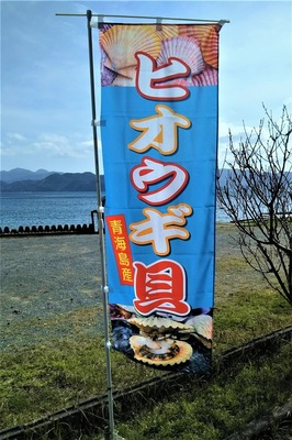 ヒオウギ貝の幟旗.jpg