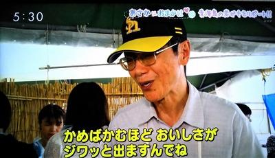 ヒオウギ貝特徴説明ポート.jpg
