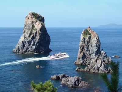 ピンクシータスとカモメ岩.jpg