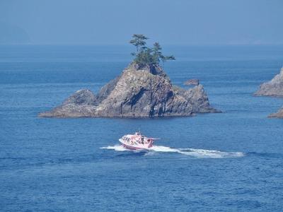 ピンクシータス・小山島.jpg