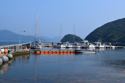 フィッシャリーナ小島2.jpg