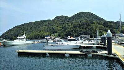 フィッシャーマリーナ小島5.jpg