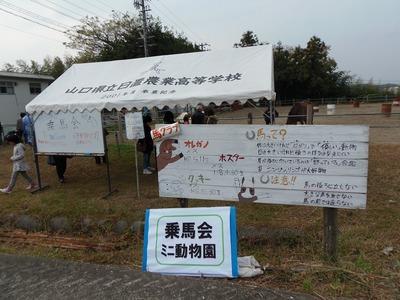 ミニ動物園.jpg