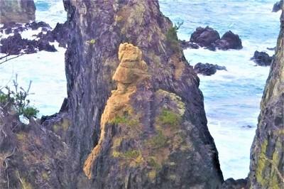 ライオン岩.jpg