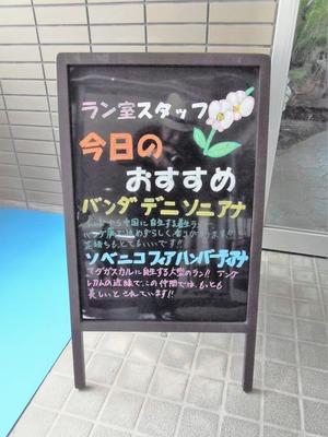 ラン室スタッフの今日のおすすめ.jpg