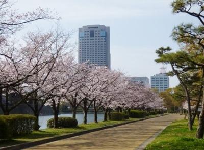 リーガロイヤルホテル広島と桜.jpg