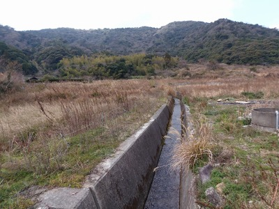 ワラビ川.jpg