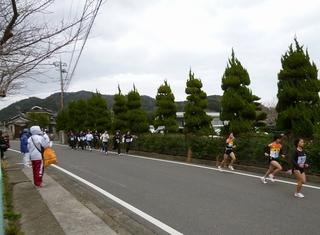 中学・高校・一般女子3km1.jpg