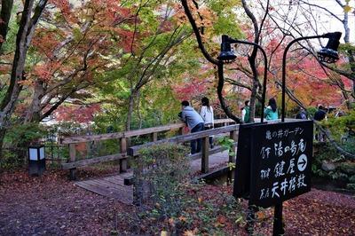 亀の井ガーデン1.jpg