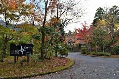 亀の井ガーデン2.jpg