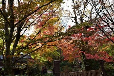 亀の井ガーデン6.jpg