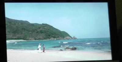 二位ノ浜1.JPG