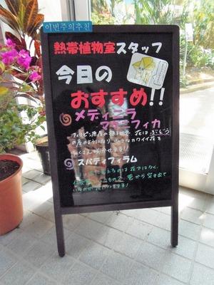 今日のおすすめ.jpg