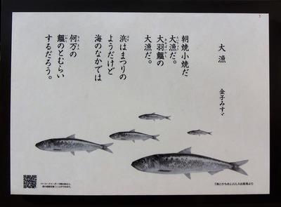 仙崎☆みすゞ☆まちなかギャラリー 大漁.jpg