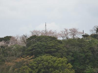 仙崎からの王子山公園2.jpg